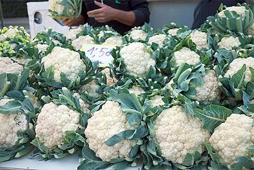 cauliflowerpic.jpg