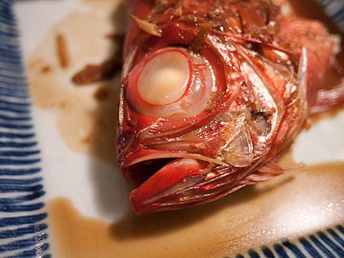 fish-bigeyes.jpg