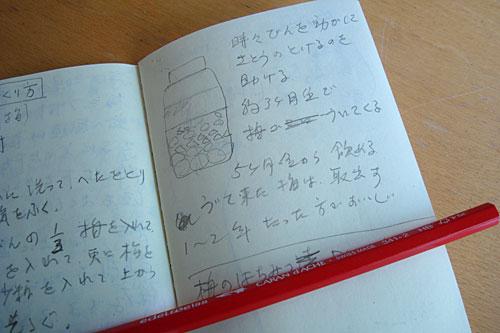 michiko_umenotes.jpg