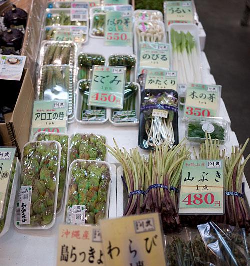 nishiki-sansai1.jpg