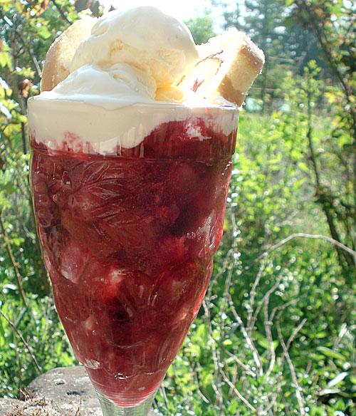 Rhubarb berry trifle