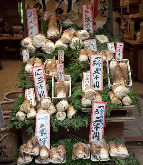 takonoko-kyoto-display1.jpg