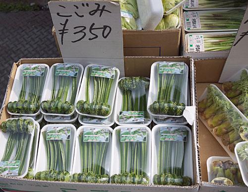 tsukiji-sansai1.jpg